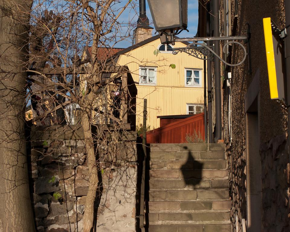 djurgården_STO_20081119_0032_blurb2400