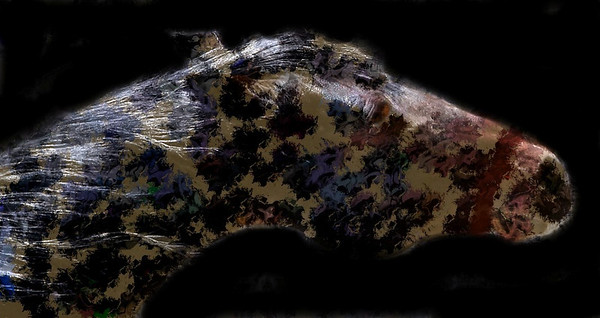 """War Horse""<br /> Photograph on canvas 18 x 36<br /> Available in Limited Editions<br /> Painted horse"