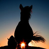 Mustang Sundown<br /> Rachael Waller Photography<br /> All rights reserved.