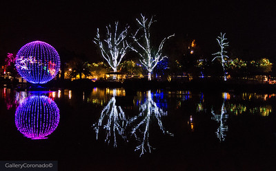 purple ball light white trees 2126