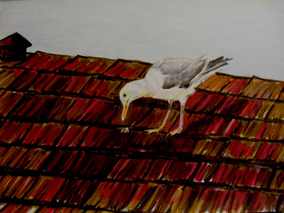 """Rooftop Gull"" 81/2""X 11 Felt Pen on Rendr Paper"