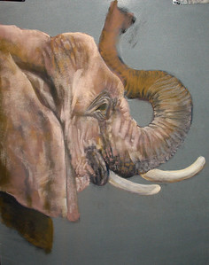 "Six Flags Elephant 19""x25"" Soft Pastel on Sand Paper"