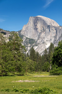 Half Dome, from the valley floor.