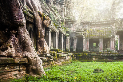 Praeh Khan temple in Cambodia. © 2012 Nicole S. Young