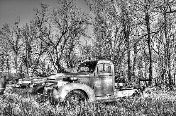 Fire Truck in Black & White