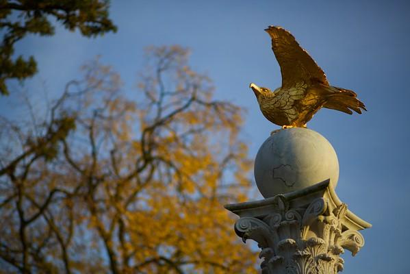 The Guardian's Eagle
