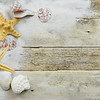 Seashells, starfish and sand on a rustic wooden background with copy space. Concept for beach or summer.