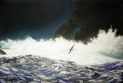Pastel on Conte Paper. This was a study in waterscapes from a while back. I have redrawn it once (see Albatros II) and I'm currently working on a similar seascape.  Pastel drawing from an original photograph: 'Seascape and albatross' by Kim Westerskov, Winner of the 1991 Wildlife Photographer of the Year - Wild Places Catagory.