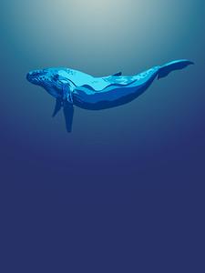 Whale Quiet