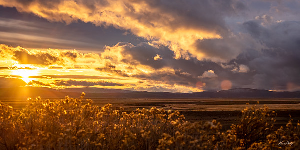 Cal-Ore Sunset