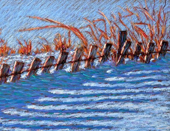 Snow Fence
