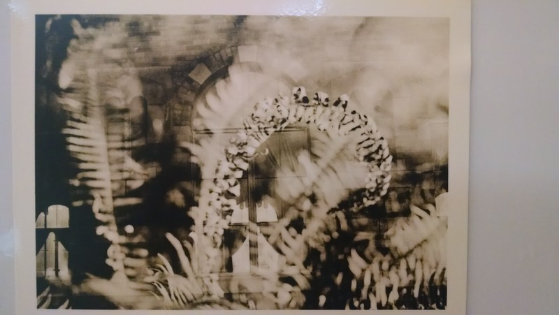 Double exposure lith print