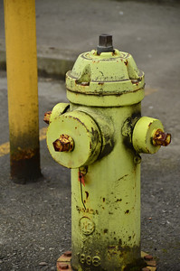 It's a fire hydrant!