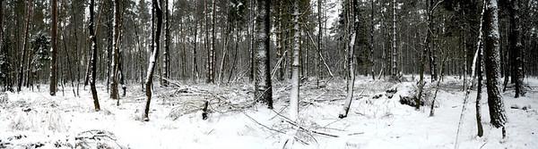 Lichtenberg bei Feldberg