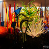 "MILLE FIORI, 2014 - by Dale Chihuly<br /> Dimensions: 9 x 25 x 10<br /> <br /> MY FAVORITE in the exhibit - I could not stopping taking photos of it!!! This is the view you see when you enter the room. When you see it for the first time, it is breathtakingly beautiful. <br /> <br /> ""From the Italian for a ""thousand flowers,"" this unique series is comprised of a variety of works. Components of the Mille Fiori series resemble organic shapes such as the antherium or fern, or the intuitive resemblance of a heron's lengthy body or the foot of a frog. They are sometimes arranged in single elements or grouped together with as many as twelve installations. Combined, these installations truly create a mystical garden of glass."" ~ Reprinted text from here: <a href=""http://www.chihulyworkshop.com/chihuly-mille-fiori.html"">http://www.chihulyworkshop.com/chihuly-mille-fiori.html</a><br /> <br /> 1st Level<br /> William J. Clinton Presidential Library and Museum<br /> Little Rock, AR"