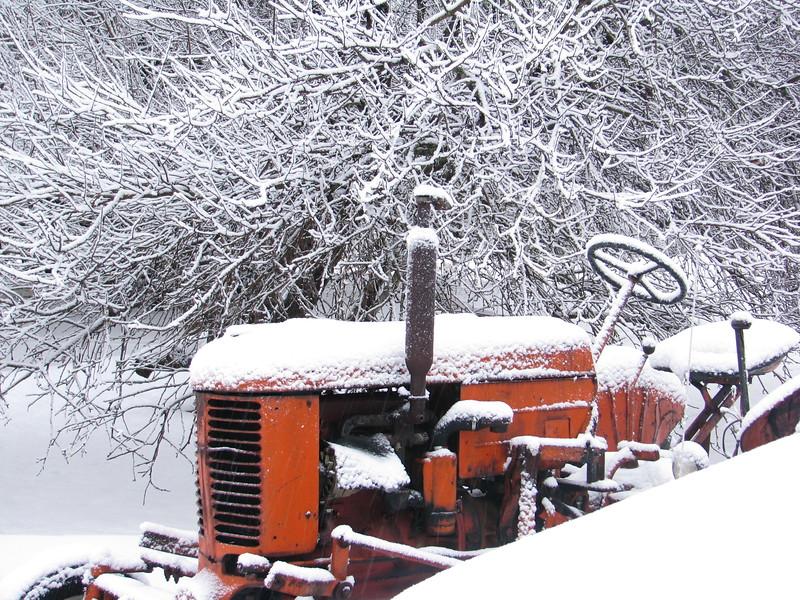 02-24-2010-Snow-012
