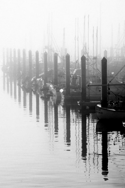 "Foggy Princeton Morning<br /> Princeton by the Sea, California<br /> By Brett Downen<br /> <br /> Float Mounted MetalPrint<br /> Available sizes: 4"" x 6"", 8"" x 12"", 16"" x 24"". 24"" x 36"""