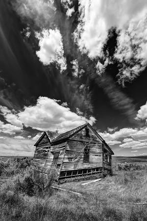 Rosebush Lane High Desert, Oregon By Beverly Downen