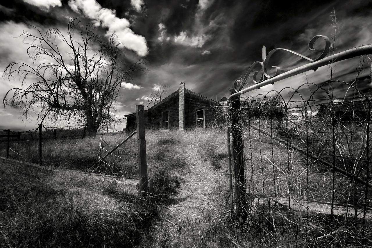 Open House<br /> High Desert, Oregon<br /> By Beverly Downen