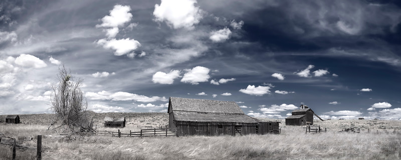 """Forgotten Town<br /> High Desert, Oregon<br /> By Beverly Downen<br /> <br /> Printed on archival quality paper<br /> Available in two sizes: 8"""" x 20"""" or 12"""" x 30"""""""