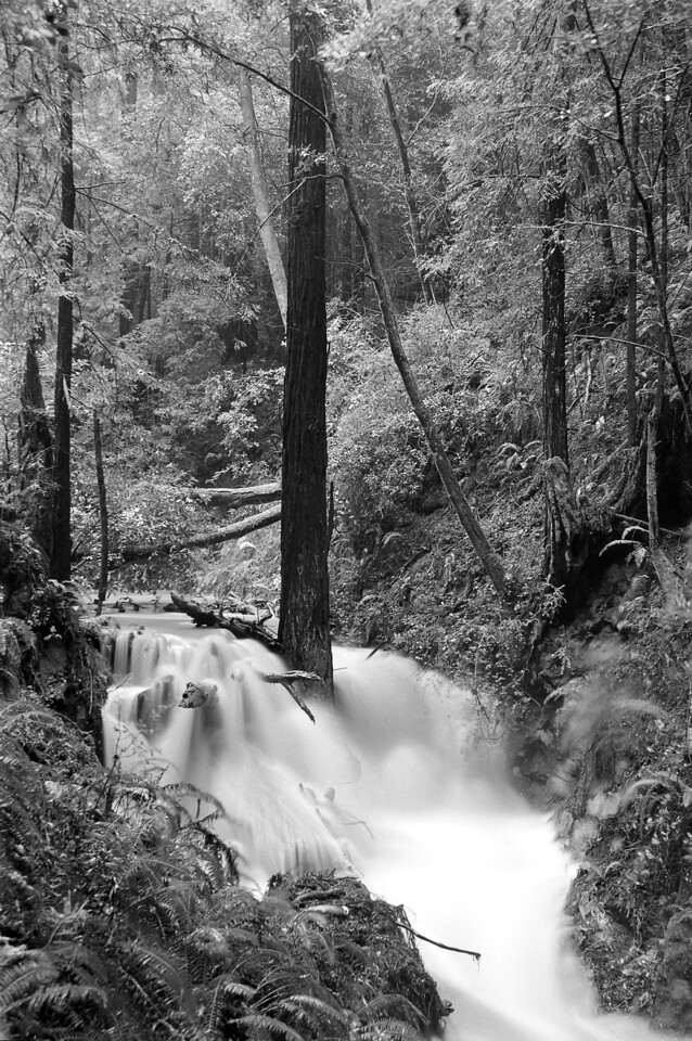 "Tunitas Creek Flooding<br /> By Brett Downen<br /> <br /> Float Mounted MetalPrint<br /> Available sizes: 4"" x 6"", 8"" x 12"", 16"" x 24"". 24"" x 36"""