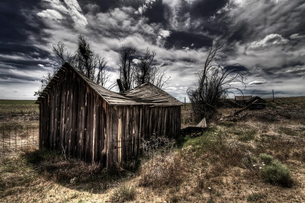 The Chicken Coop<br /> <br /> by Brett Downen