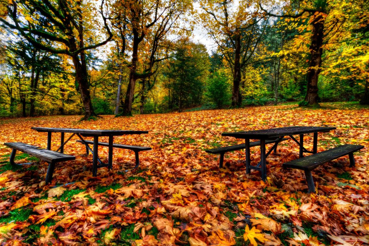 Autumn in The Gorge<br /> Near Portland, Oregon<br /> <br /> by Brett Downen