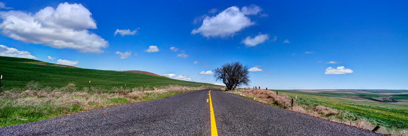 Another lonely road on the high plains in Oregon.<br /> <br /> by Brett Downen