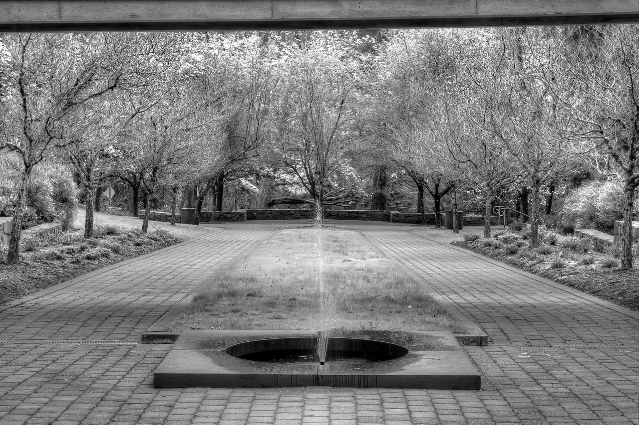 "Garden of Solace. The Vietnam Veterans War Memorial<br /> Washington Park, Portland, Oregon<br /> By Brett Downen<br /> <br /> Float Mounted MetalPrint<br /> Available sizes: 4"" x 6"", 8"" x 12"", 16"" x 24"". 24"" x 36"""