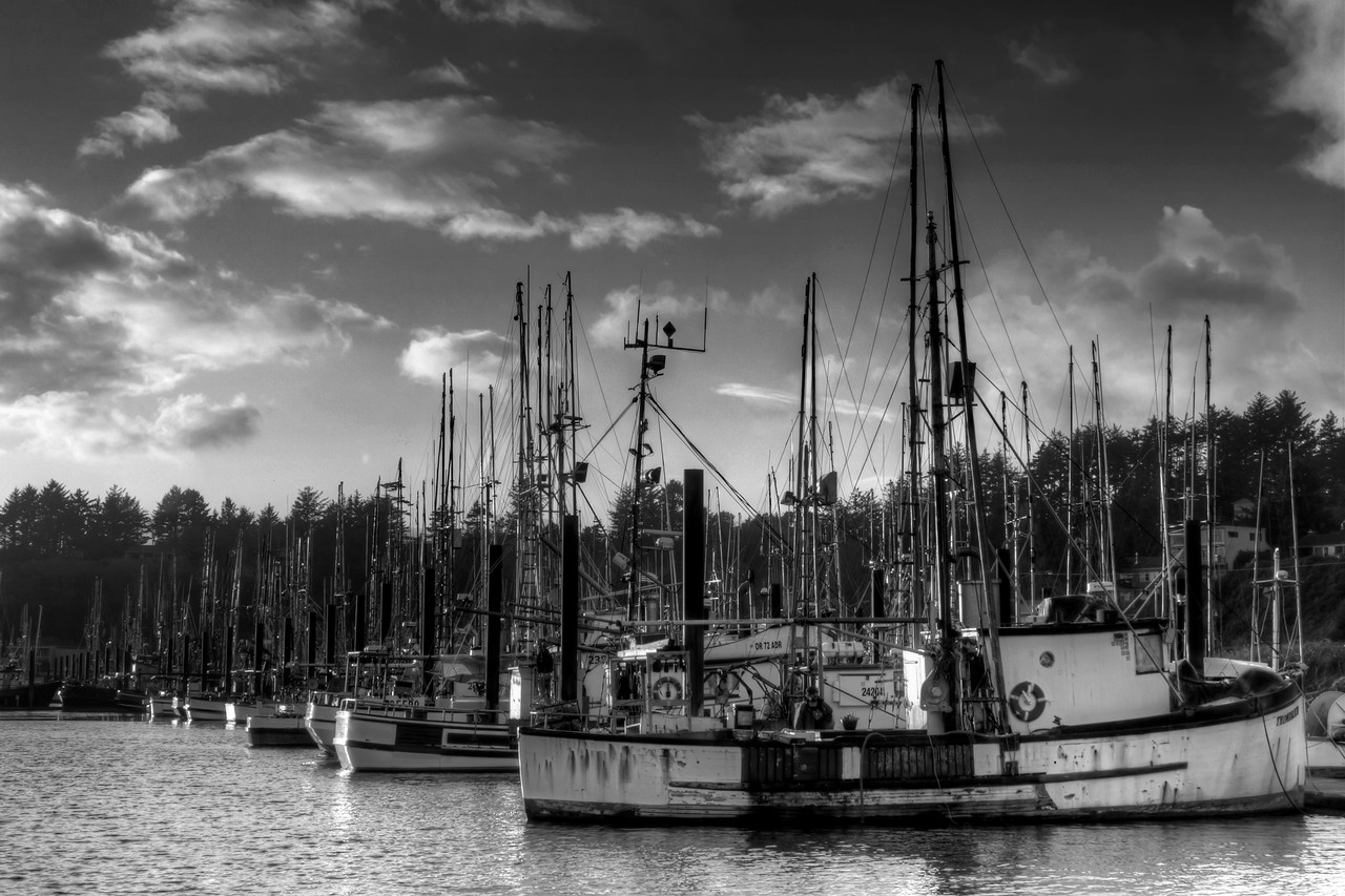 "The fleet of fishing boats in the Newport, Oregon harbor getting prepped for a journey out to sea. The next morning the harbor was practically empty, I suppose opening day had come.<br /> By Brett Downen<br /> <br /> Float Mounted MetalPrint<br /> Available sizes: 4"" x 6"", 8"" x 12"", 16"" x 24"". 24"" x 36"""
