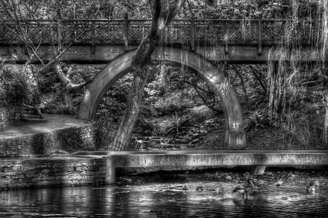 """The Bridge Over the Rhododendron Garden.<br /> Southeast Portland, Oregon<br /> By Brett Downen<br /> <br /> Float Mounted MetalPrint<br /> Available sizes: 4"""" x 6"""", 8"""" x 12"""", 16"""" x 24"""". 24"""" x 36"""""""