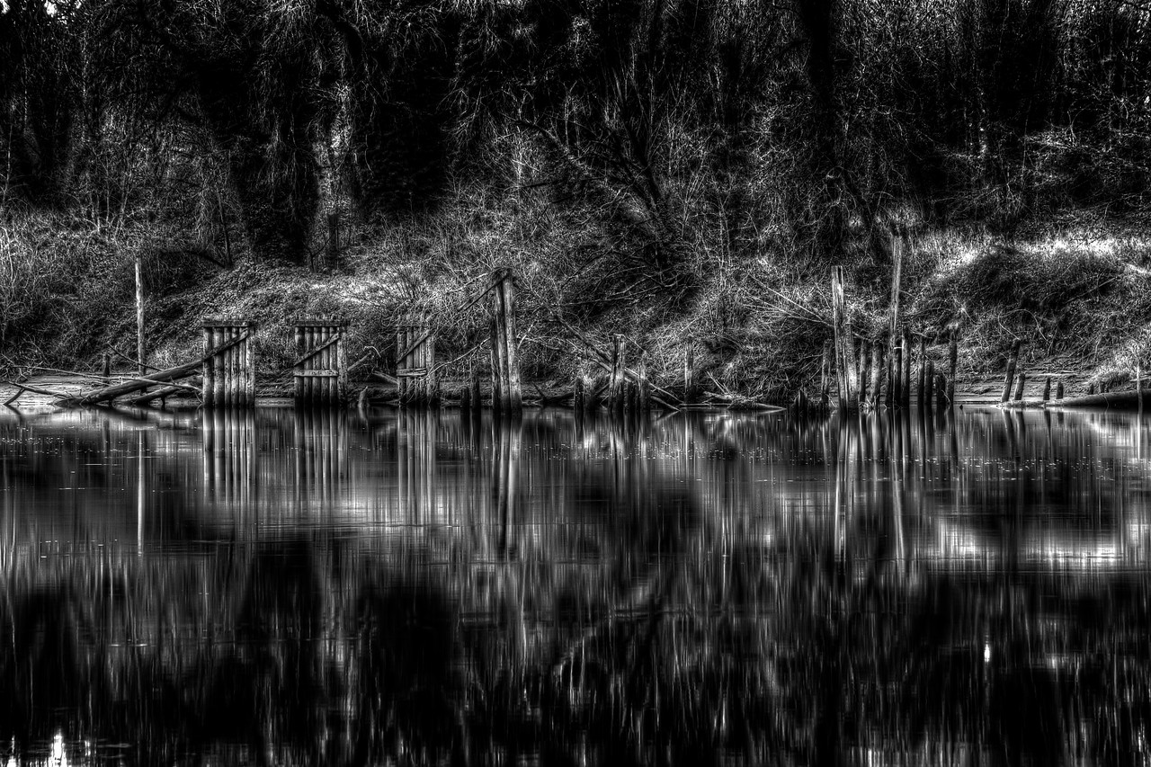 Hebb Park<br /> near Portland Oregon<br /> <br /> by Brett Downen