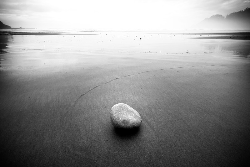 Rolled Stone<br /> Oswald State Park, Oregon<br /> By Beverly Downen