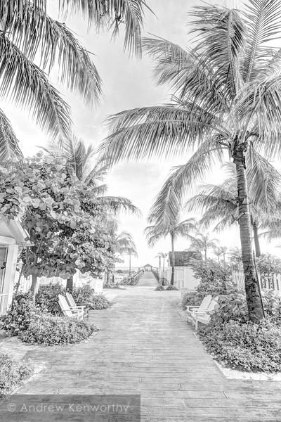 Bahama's 128
