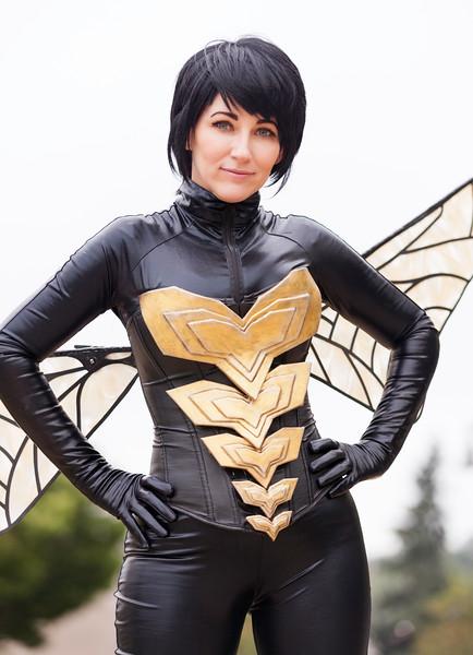 reine-bee-wasp-3.jpg