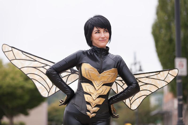 reine-bee-wasp-1.jpg