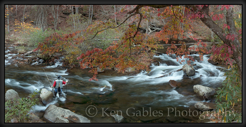 Tellico River, Cherokee National Forest, Monroe County, Tennessee