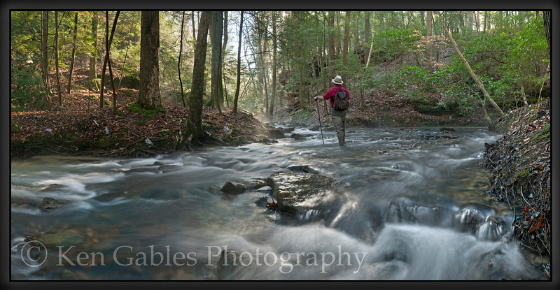Parker Creek, Sipsey Wilderness, Winston County, Alabama