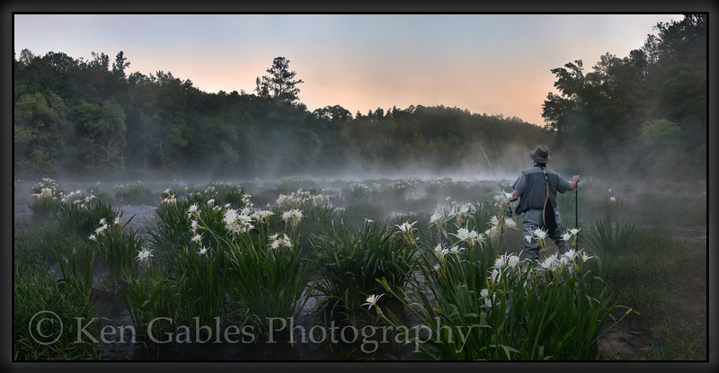 Cahaba Lilies, Cahaba River National Wildlife Refuge, Bibb County Alabama