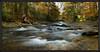 Davidson River, Transylvania County North Carolina