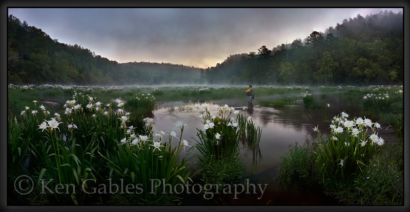 Cahaba Lilies, Cahaba River National Wildlife Refuge, Bibb County, Alabama