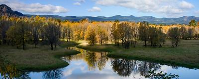 Mirrored Pond