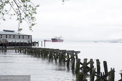 Pier 39 (1)