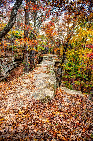 Natural Bridge Sewanee TN 110