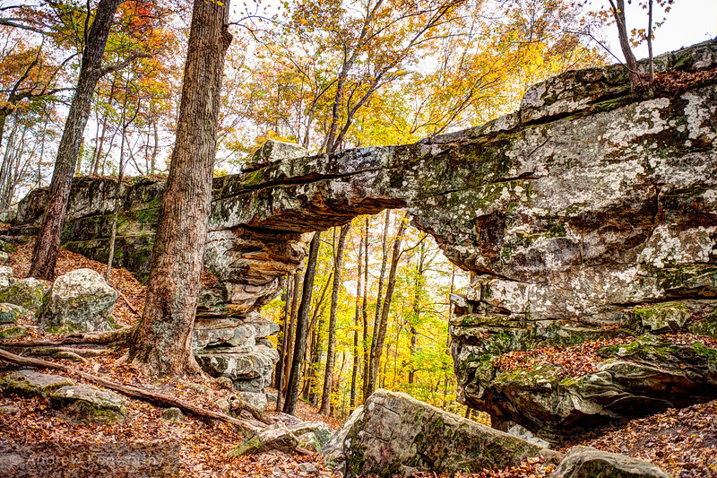 Natural Bridge Sewanee TN 114