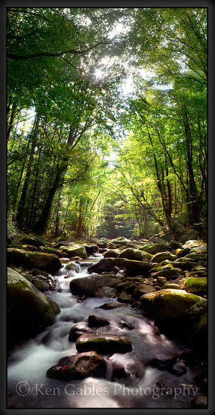 Middle Prong of the Little River, Great Smoky Mountain National Park, Tennessee