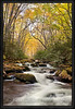 Oconaluftee River, Great Smoky Mountain National Park, North Carolina