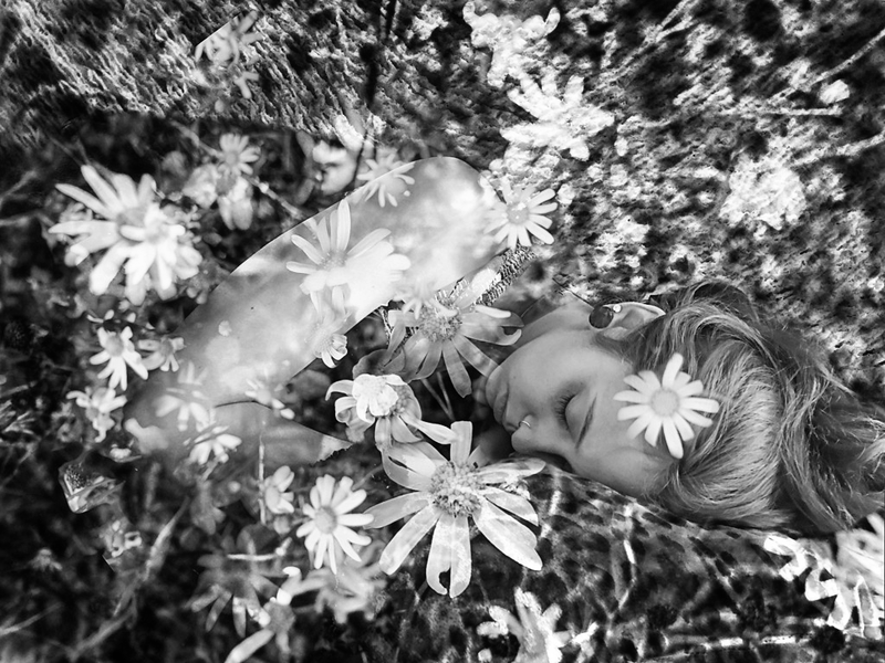 Asleep with the flowers