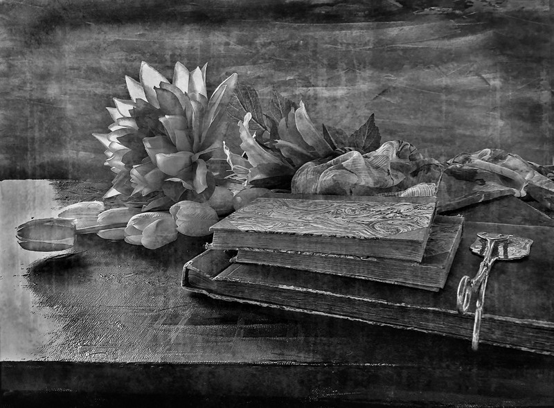 Books and Flowers 02