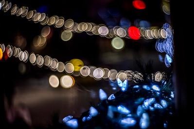 2014-12-26_0018_Bernardo Fuller